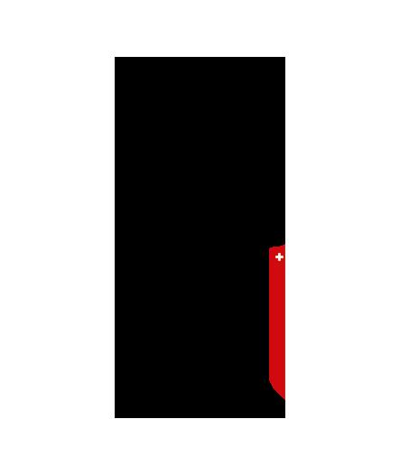 Yves Swiss AG | Logo
